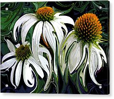 Droopy Daisies Acrylic Print by Suzy Freeborg