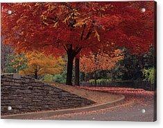 Druid Park-baltimore -- Maryland II Acrylic Print by Harold E McCray