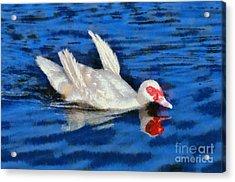Painting Of Duck Acrylic Print by George Atsametakis