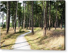Dutch Country Bicycle Path Acrylic Print by Carol Groenen