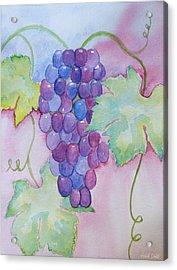 D'vine Delight Acrylic Print by Heidi Smith