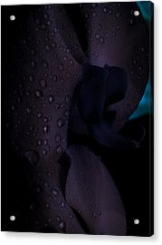 Each Droplet Contains A Wish Acrylic Print by Tara Miller