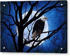 Eagle Night Acrylic Print by Gary Smith