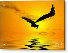 Eagle Sunset Acrylic Print by John Edwards