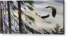 Eagles Romance Acrylic Print by James Williamson