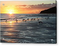 Early Birds Acrylic Print by Dick Botkin