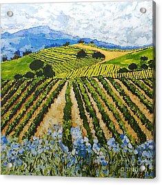 Early Crop Acrylic Print by Allan P Friedlander