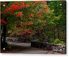 Early Fall At Talimena Park Acrylic Print by Robert Frederick