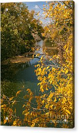 Early Fall On The Navasota Acrylic Print by Robert Frederick