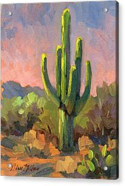 Early Light Acrylic Print by Diane McClary
