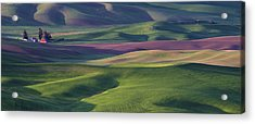 Early Light In The Palouse Acrylic Print by Latah Trail Foundation