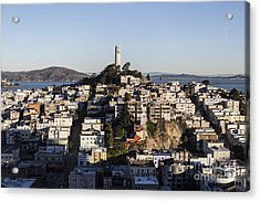 Early Morning Light On Telegraph Hill And Coit Tower Park In San Francisco Acrylic Print by Trekkerimages Photography