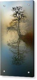Early Morning Acrylic Print by manhART