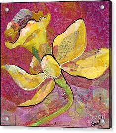 Early Spring Iv Daffodil Series Acrylic Print by Shadia Zayed