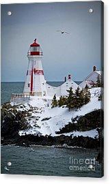 East Quoddy Head Lighthouse Acrylic Print by Alana Ranney