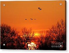 Easter Sunrise Acrylic Print by Elizabeth Winter