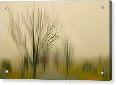Easy On Me Acrylic Print by Diana Angstadt