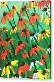 Echinacea Acrylic Print by Kendall Wishnick Adams