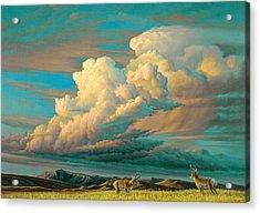 Edge Of The Prairie- Pronghorn Acrylic Print by Paul Krapf