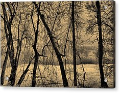 Edge Of Winter Acrylic Print by Bob Orsillo