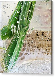 Effervescent  Acrylic Print by Shawna  Rowe