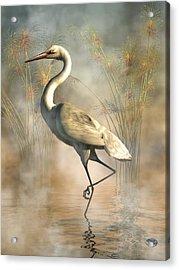 Egret Acrylic Print by Daniel Eskridge