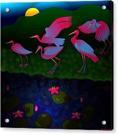 Egrets Acrylic Print by Latha Gokuldas Panicker