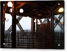 Eiffel Tower - Paris France - 011310 Acrylic Print by DC Photographer