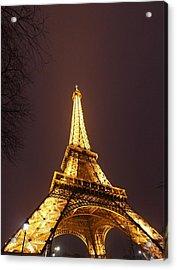 Eiffel Tower - Paris France - 011313 Acrylic Print by DC Photographer