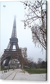 Eiffel Tower - Paris France - 011314 Acrylic Print by DC Photographer