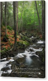 Look Deep Into Nature Acrylic Print by Bill Wakeley