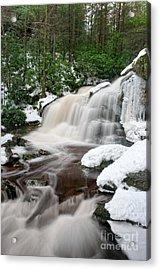 Elakala Falls #2 D30013231 Acrylic Print by Kevin Funk