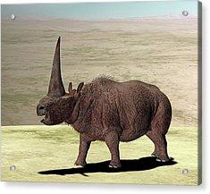 Elasmotherium Acrylic Print by Friedrich Saurer