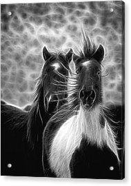 Electrified And Wild D8873 Acrylic Print by Wes and Dotty Weber
