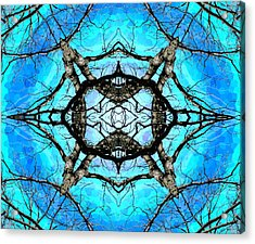 Elemental Force Acrylic Print by Shawna Rowe