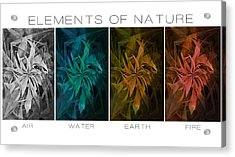 Elements Of Nature Acrylic Print by Marianna Mills