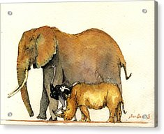 Elephant Ostrich And Rhino Acrylic Print by Juan  Bosco