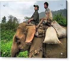 Elephant Rides Acrylic Print by James Wheeler