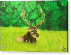 Elk In The Distance Acrylic Print by Michael Hall