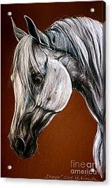Emanda Acrylic Print by Angel  Tarantella