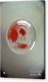 Embryogenesis #3 Of 3 Acrylic Print by Thomas Luca