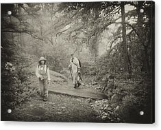Enchanted Forest Acrylic Print by Jim Cook