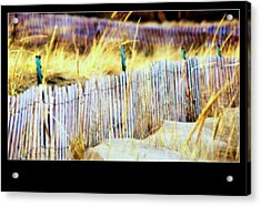 Enclosed Sand Dune Acrylic Print by Rosemarie E Seppala