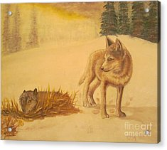 Endangered Wolves - Original Oil Painting Acrylic Print by Anthony Morretta