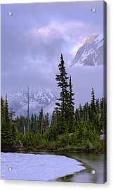 Enduring Winter Acrylic Print by Chad Dutson
