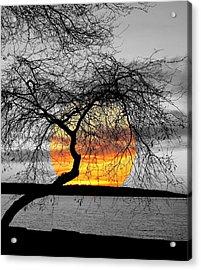 English Bay Sunset Acrylic Print by Brian Chase