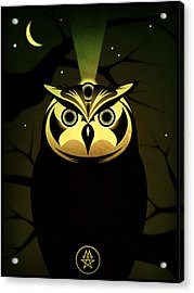 Enlightened Owl Acrylic Print by Milton Thompson