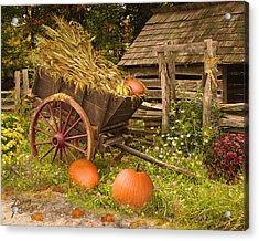 Essence Of Autumn  Acrylic Print by Doug Kreuger