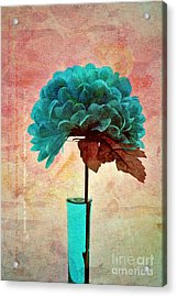 Estillo - S04b2t22 Acrylic Print by Variance Collections