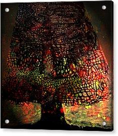 Eternity Acrylic Print by Eli Kaghazchi